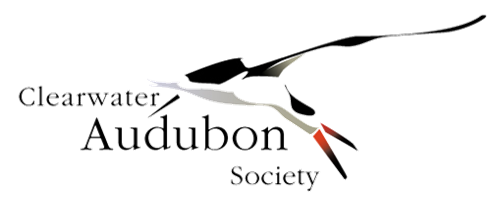 Clearwater Audubon Society
