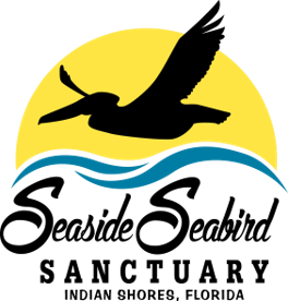 Seaside Seabird Sanctuary