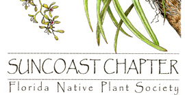 Suncoast Chapter of the Florida Native Plant Society