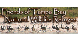 Friends of the Tampa Bay NWR